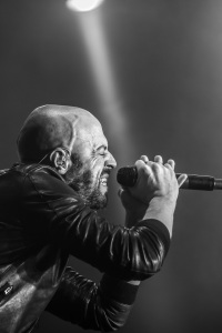 DAUGHTRY live