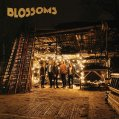 Blossoms - Blossoms - CD review - VÖ 05.08.2016