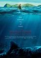 The Shallows - Gefahr aus der Tiefe - ab 25.08. im Kino - Verlosung, Gewinnspiel